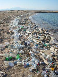 Polluted Beach, Rotes Meer vor Ägypten